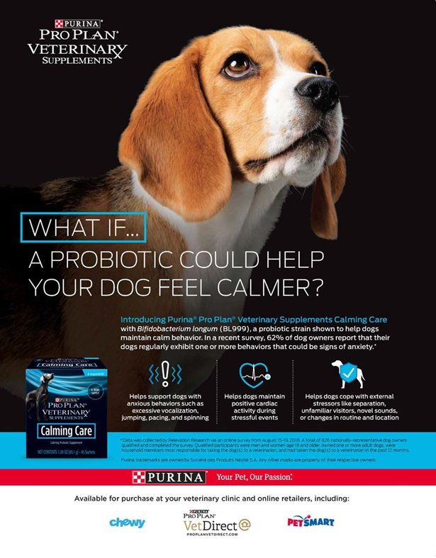 Purina Dog Food ad links to the Purina website.